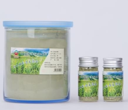 田中升麦绿茶(素)